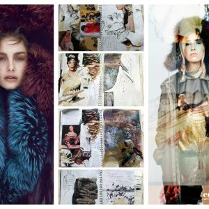 0010_03_intro raoni raccoon dyed fur moodboard envie signed